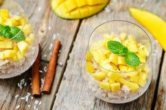 Budino di riso della cannella del mango Immagini Stock Libere da Diritti