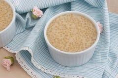 Budino sano fatto dalle perle e dal latte di cocco della tapioca fotografie stock libere da diritti