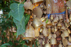 Budist Bells. Collection of Budist bells hanging from a tree Stock Images