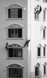 Budowniczych fasadowi malarzi pracuje dla utrzymania Zdjęcia Stock