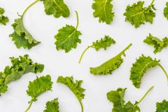 Buds of kale cabbage. Salad with a rustic and healthy aspect. Isolated on white background. Texture stock photo