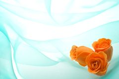 Buds of a rose on a green. Decorative orange buds of a rose from soap on a background green organza Royalty Free Stock Photo