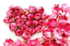 Buds of tea-roses in shape of heart and petals Royalty Free Stock Photos
