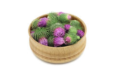 Buds thistles in a wooden bowl Royalty Free Stock Photos