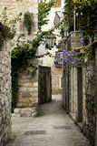 budva montenegro老街道城镇 免版税库存照片