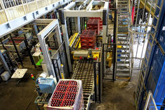 Budvar Budweiser brewery. Bottle sorting, washing and beer bottling workshop. Stock Photos