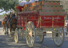 Budweiser Clydesdales furgon Obrazy Royalty Free