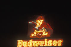 Budweiser neon sign Royalty Free Stock Images