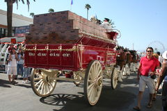 Budweiser Wagon Royalty Free Stock Photo