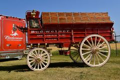 Budweiser wagon and truck for hauling the Clysdales and supplies. MOORHEAD, MINNESOta, July 22, 2017: Anheuser-Busch sponsored Grower Days honoring farming who Stock Photo