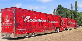 Budweisers åker lastbil för att transportera Clydesdales Arkivbild
