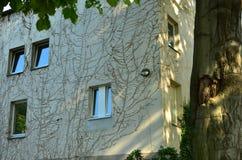 Budynek fasadowa potrzeba odświeżanie Obrazy Stock