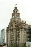 budynek królewski wątrobowy Liverpool Fotografia Royalty Free