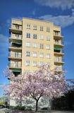 budynek mieszkaniowy Zdjęcie Royalty Free