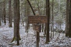 Budynek szkoły Gap Wlec, Great Smoky Mountains NP, TN Obraz Stock