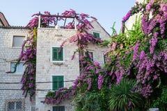 Budynek zakrywający w kwiatach fotografia royalty free