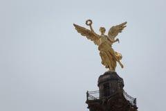 Budynki biurowi przy Meksyk obrazy royalty free