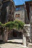 Budynki i brama w mieście Chambéry Obraz Stock