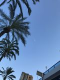 Budynki, plaża, lato, jachty w porcie Alicante zdjęcie stock