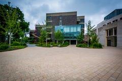 Budynki przy Harvard Law School, w Cambridge, Massachusetts Obraz Royalty Free