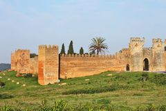 budynku chellah Morocco rzymski obrazy stock