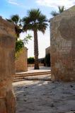 budynku drzewko palmowe Obraz Stock