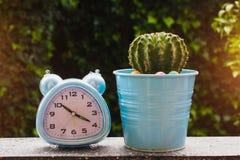 Budzik i kaktusowy garnek zdjęcie stock