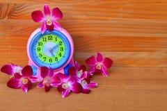Budzik i kwiat purpurowa orchidea na drewnianym podłogowej deski wiosny czasu pojęciu Obraz Royalty Free