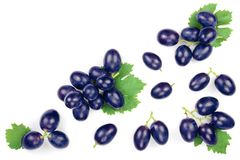 Bue grapes isolated on the white background with copy space for your text. Top view. Flat lay pattern royalty free stock photography