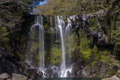 Bueatiful water fall in rain forest. The second level of water fall in the park at Jeju island, South Korea Royalty Free Stock Photos