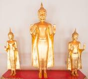 Bueatifulen buddha skulpterar på Wat Po på November i Thailan Arkivfoto