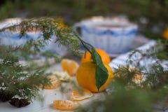 Buen alcohol del Año Nuevo El mandarín en un fondo de tazas con té y abeto ramifica Imágenes de archivo libres de regalías