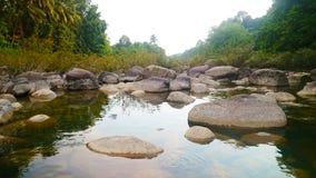 Buen río de la roca del paisaje del paisaje con el bosque imagen de archivo