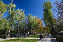 The Buen Retiro Park in Madrid, Spain Royalty Free Stock Photos