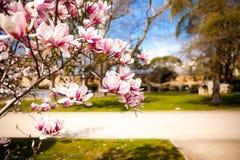 Buen Retiro park w Madryt Hiszpania Obraz Royalty Free