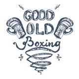 Buen viejo boxeo Fotografía de archivo libre de regalías