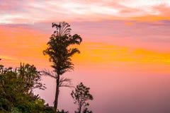 Buena mañana, luz hermosa 4 de la salida del sol Imagen de archivo libre de regalías