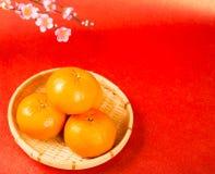 Buena suerte del medio anaranjado chino de la fruta Imágenes de archivo libres de regalías