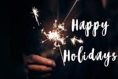 Buenas fiestas muestra del texto, tarjeta de felicitación Feliz Año Nuevo y merr Fotos de archivo libres de regalías