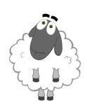 Buenas ovejas Imagen de archivo