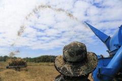 BUENG KAN, THAÏLANDE - 8 DÉCEMBRE : Récolte traditionnelle de riz de la Thaïlande Photographie stock libre de droits