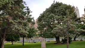 Buenos aires argentina trees Central park trees and natural air of new York royalty free stock photos
