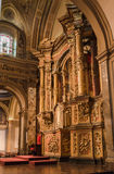 Buenos Aires Cathedral Stock Photography