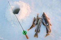 Buenos captura, primer, caña de pescar y pescados cerca del hielo-agujero en el río del invierno en un día soleado Imagenes de archivo
