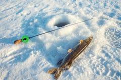 Buenos captura, primer, caña de pescar y pescados cerca del hielo-agujero en el río del invierno en un día soleado Imágenes de archivo libres de regalías