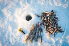 Buenos captura, primer, caña de pescar y pescados cerca del hielo-agujero en el río del invierno en un día soleado Foto de archivo