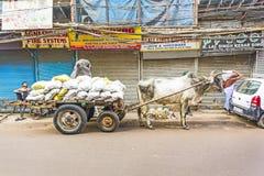 Buey-carro en las calles de Delhi vieja Fotos de archivo