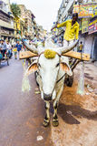 Buey-carro en las calles de Delhi vieja Foto de archivo libre de regalías
