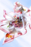 bufanda Imágenes de archivo libres de regalías