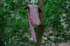Bufanda perdida Imágenes de archivo libres de regalías